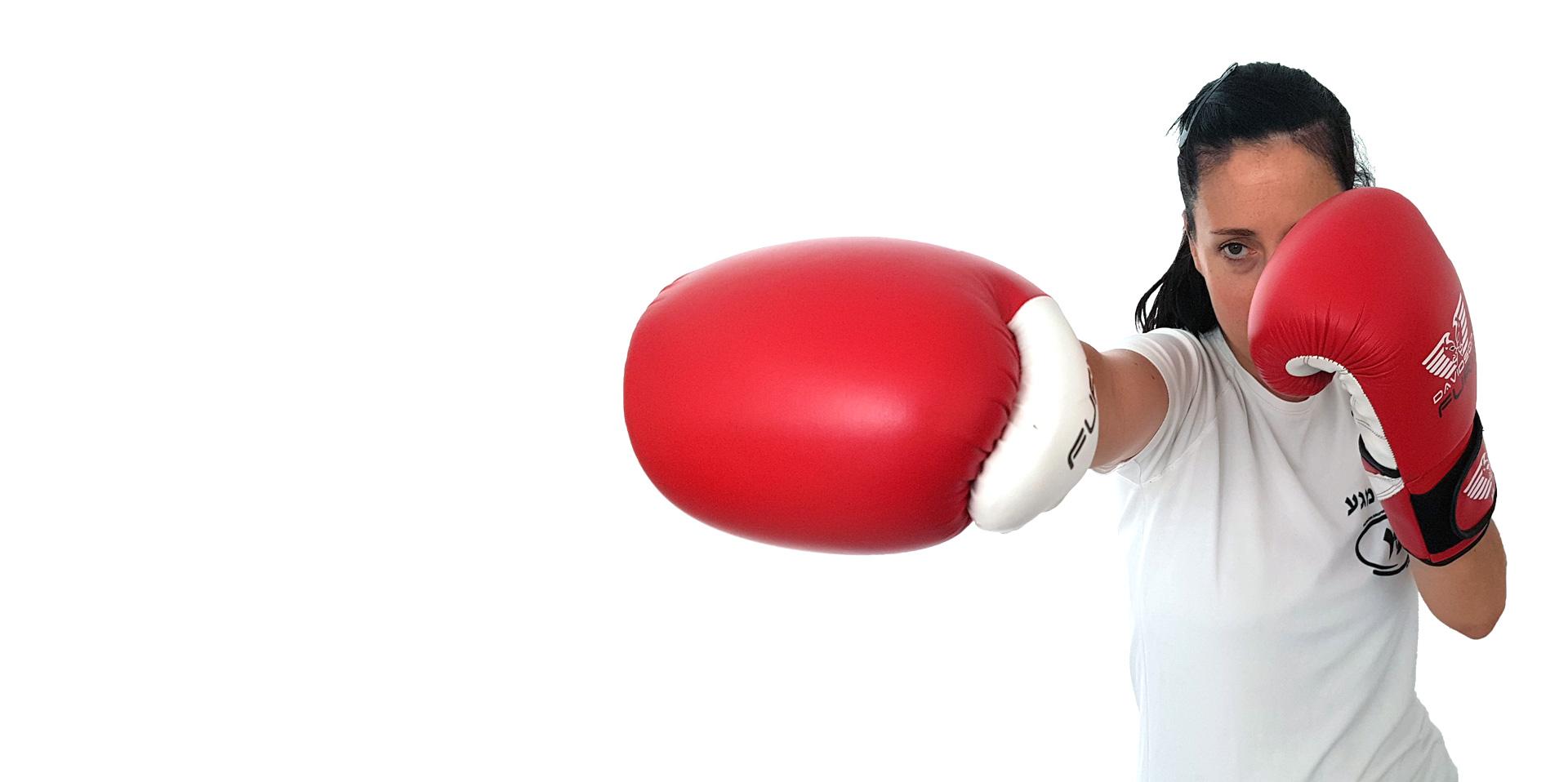 kravmaga self-defense paris paris15 paris06 leperreux